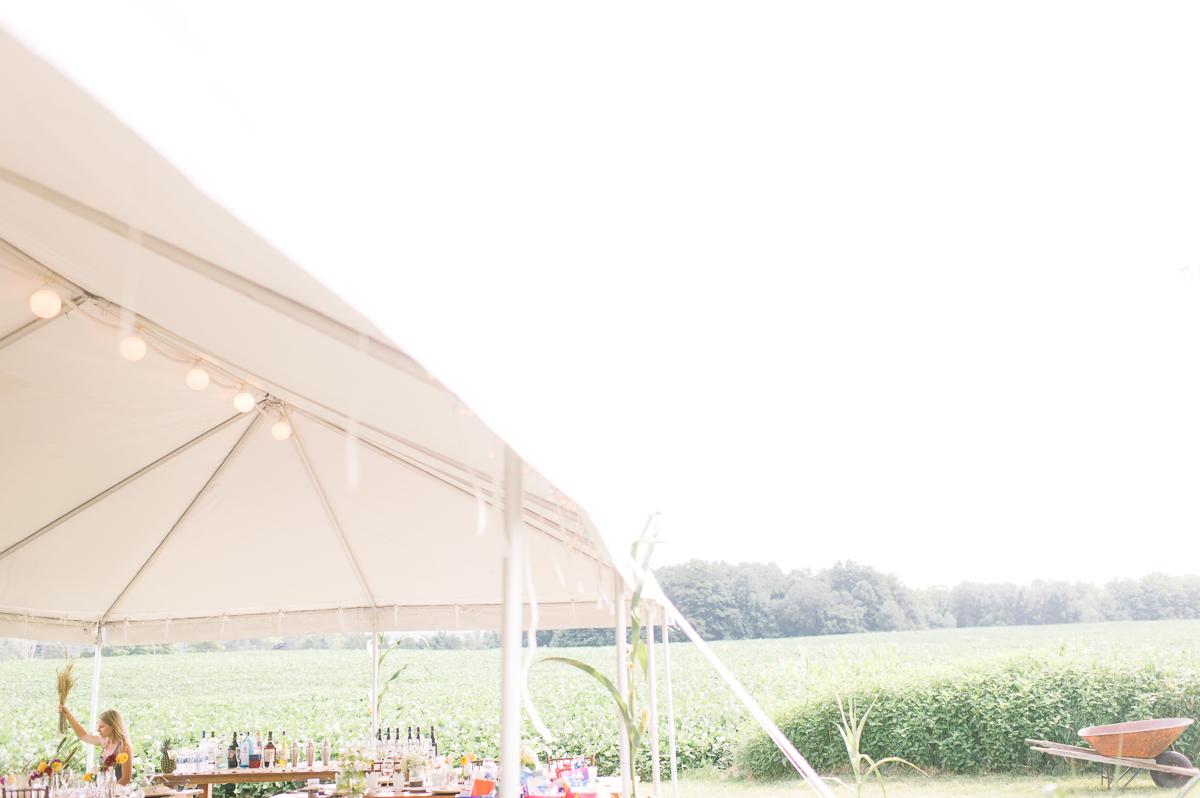 toronto wedding photography intimate wedding photography toronto elopement in toronto walkterton farm wedding farm wedding toronto-008