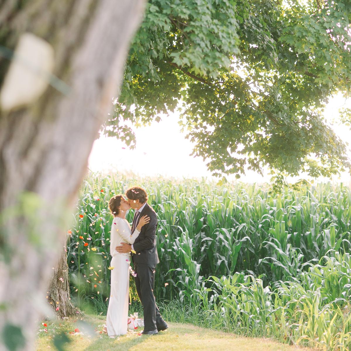toronto wedding photography intimate wedding photography toronto elopement in toronto walkterton farm wedding farm wedding toronto-039