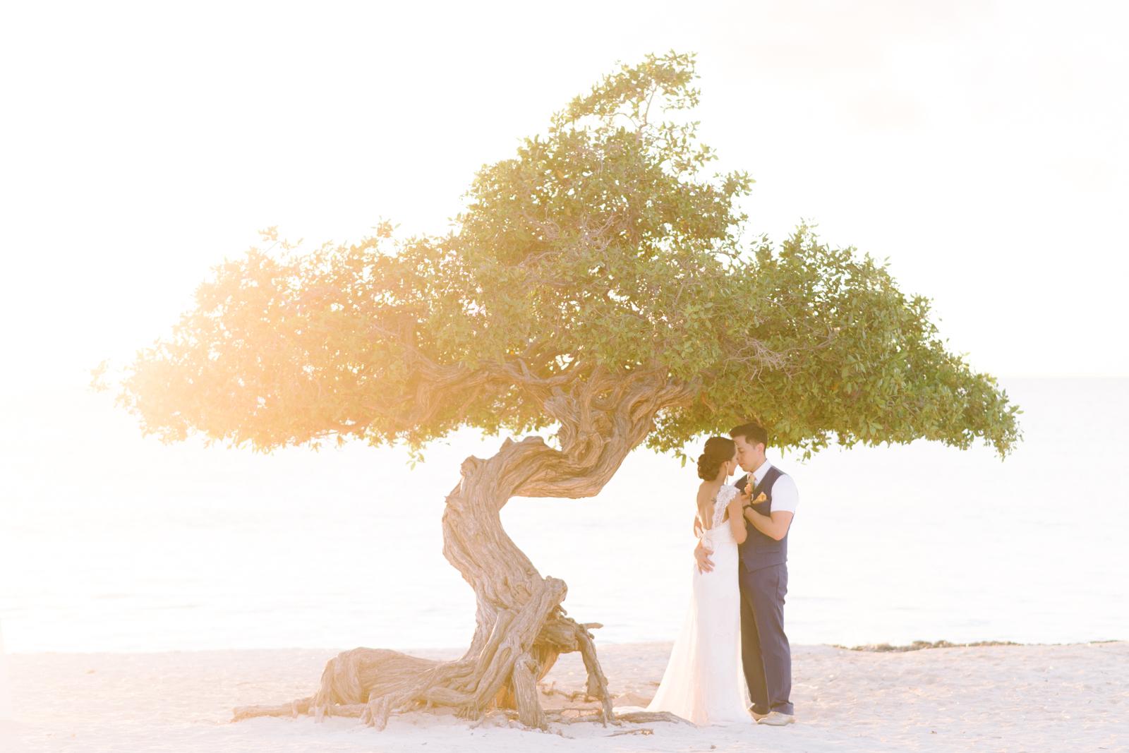 tara mcmullen photography amsterdam manor hotel wedding in aruba best wedding venue in aruba destination wedding photographer aruba indian wedding in aruba-031