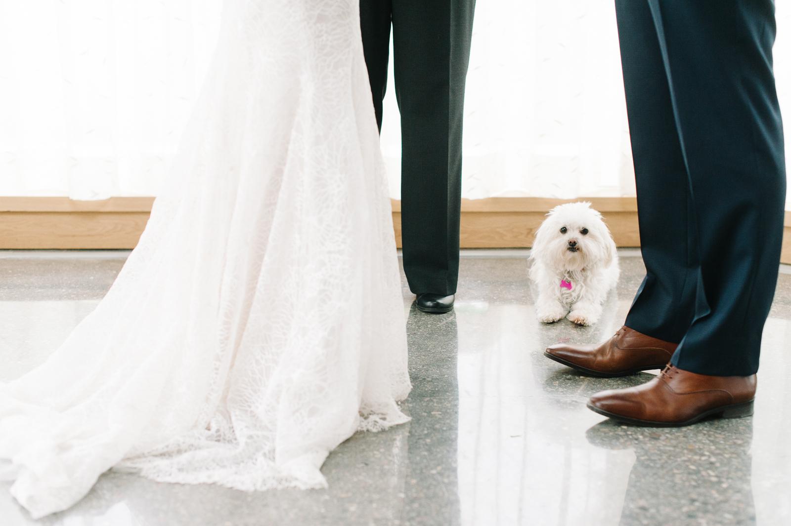 tara-mcmullen-photography-toronto-wedding-photography-alderlea-mansion-wedding-alderlea-wedding-brampton-scotsdale-farm-wedding-reem-acra-wedding-021